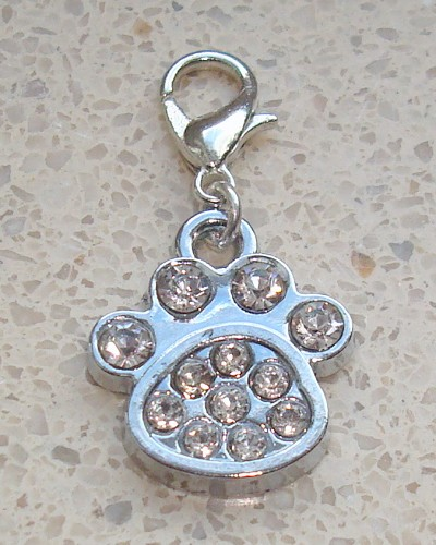 Charm Pootje met strass